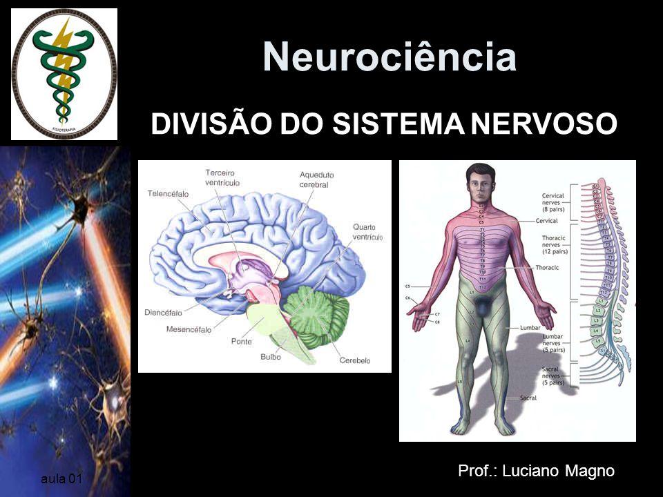 Neurociência DIVISÃO DO SISTEMA NERVOSO Prof.: Luciano Magno aula 01
