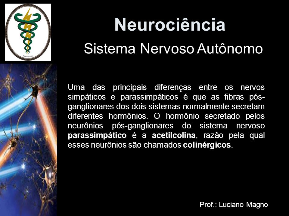 Neurociência Sistema Nervoso Autônomo