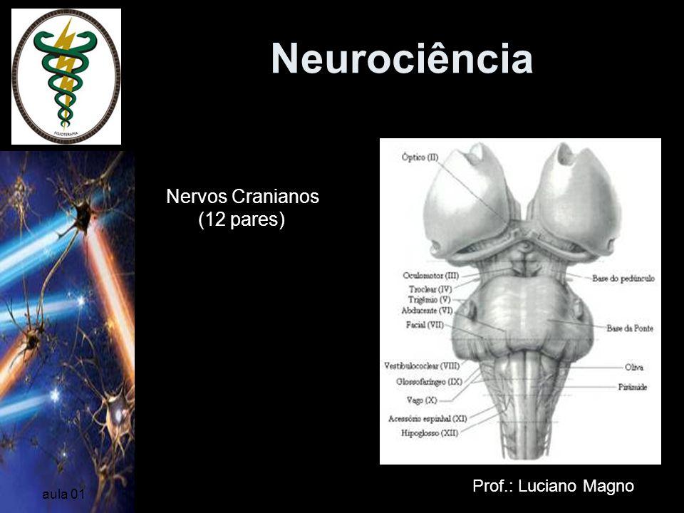Neurociência NERVOS PERIFÉRICOS Nervos Cranianos (12 pares)