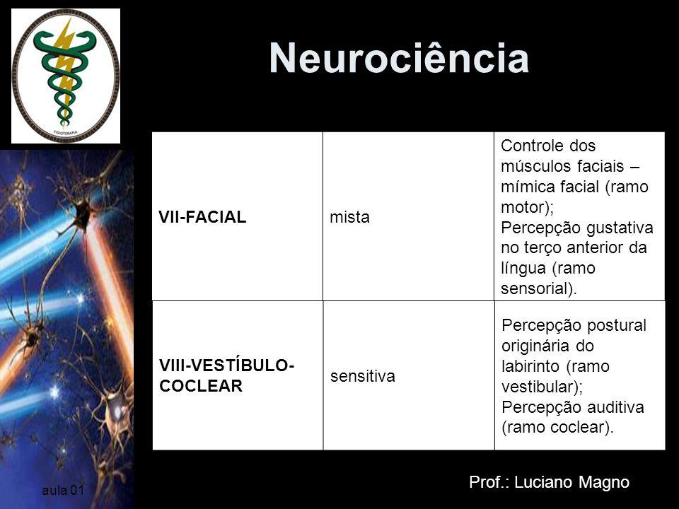 Neurociência Nervos Cranianos VII-FACIAL mista