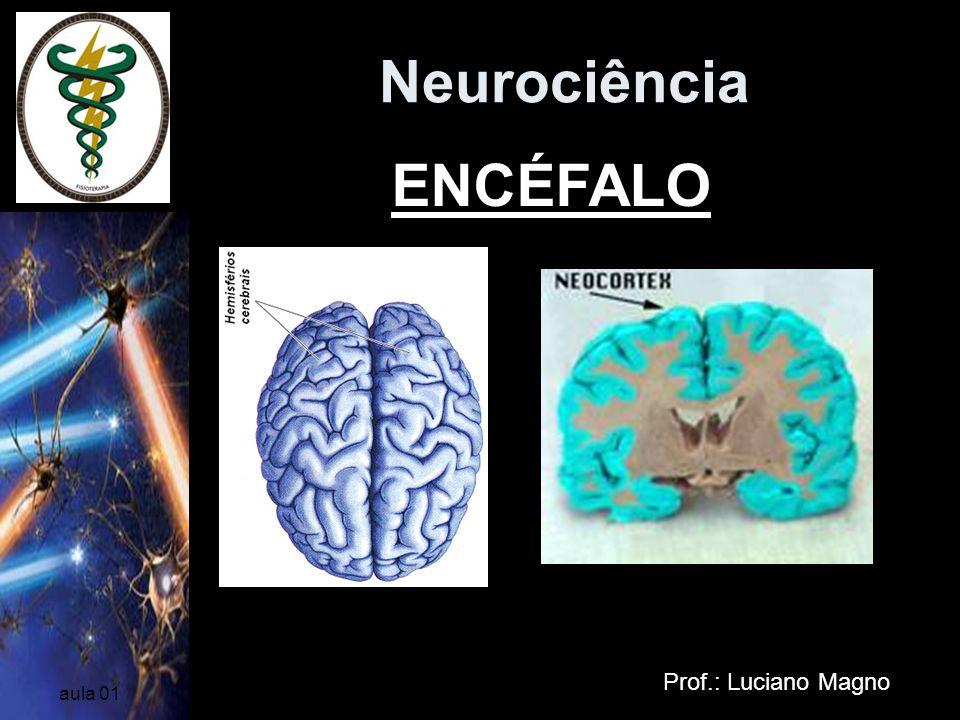 Neurociência ENCÉFALO Prof.: Luciano Magno aula 01