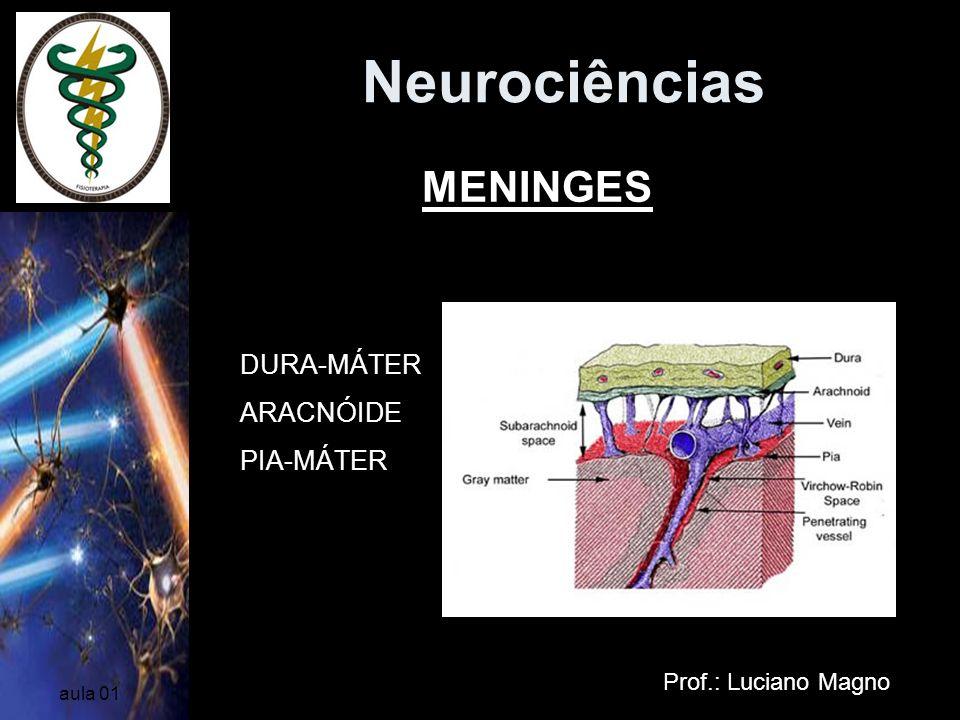 Neurociências MENINGES DURA-MÁTER ARACNÓIDE PIA-MÁTER