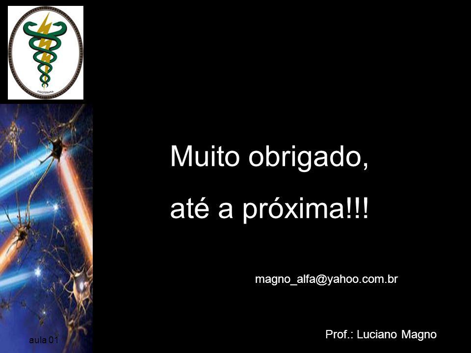 Muito obrigado, até a próxima!!! magno_alfa@yahoo.com.br