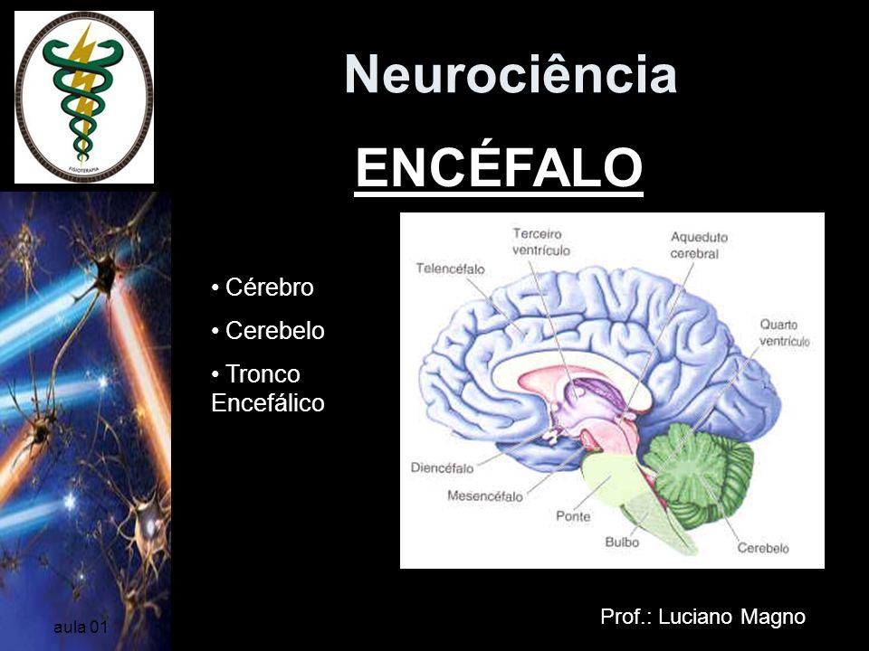 Neurociência ENCÉFALO Cérebro Cerebelo Tronco Encefálico