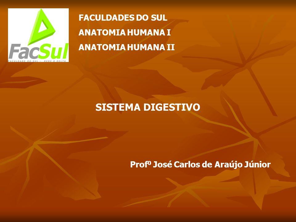 SISTEMA DIGESTIVO FACULDADES DO SUL ANATOMIA HUMANA I