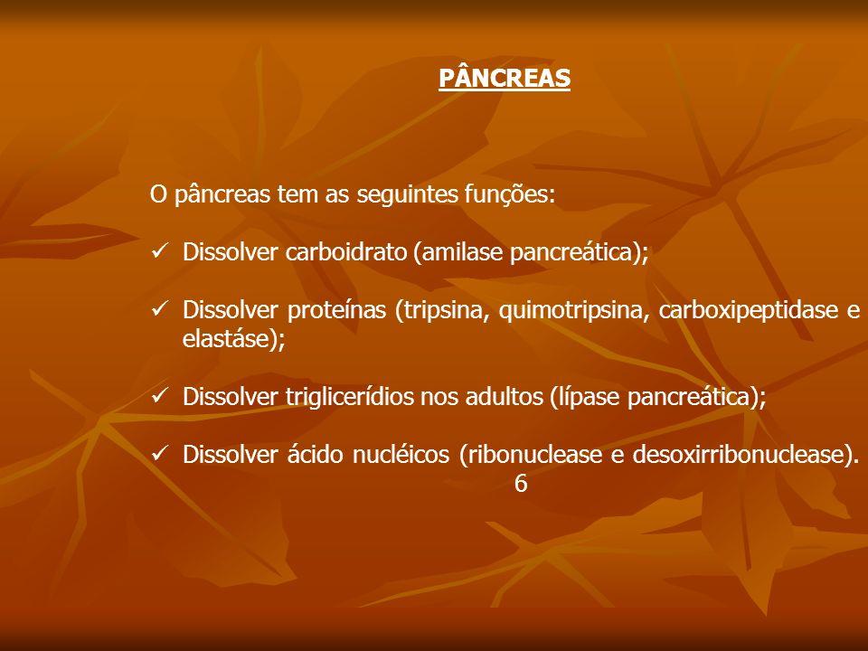 PÂNCREAS O pâncreas tem as seguintes funções: Dissolver carboidrato (amilase pancreática);