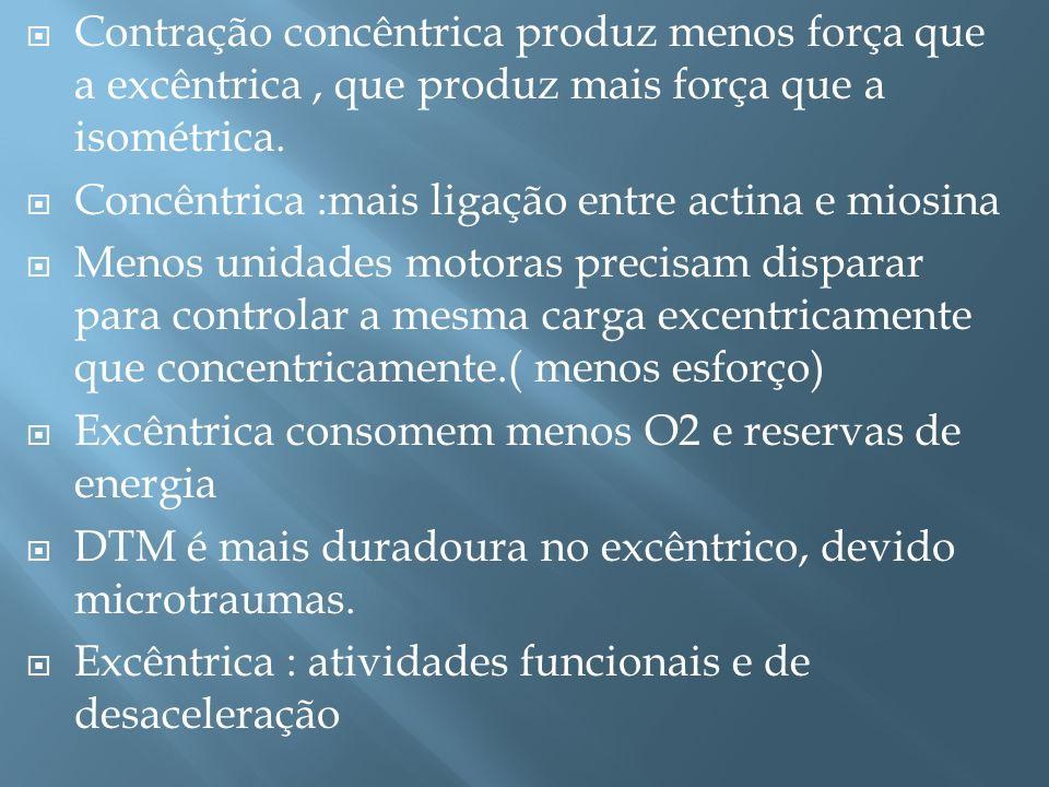 Contração concêntrica produz menos força que a excêntrica , que produz mais força que a isométrica.