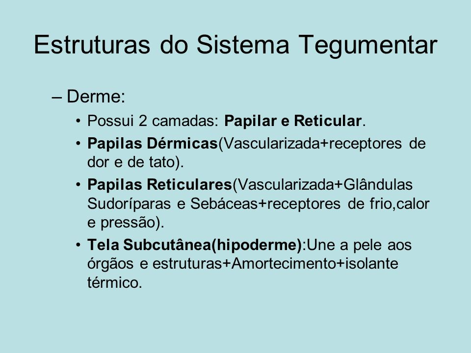 Estruturas do Sistema Tegumentar