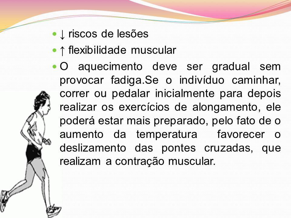 ↓ riscos de lesões ↑ flexibilidade muscular.