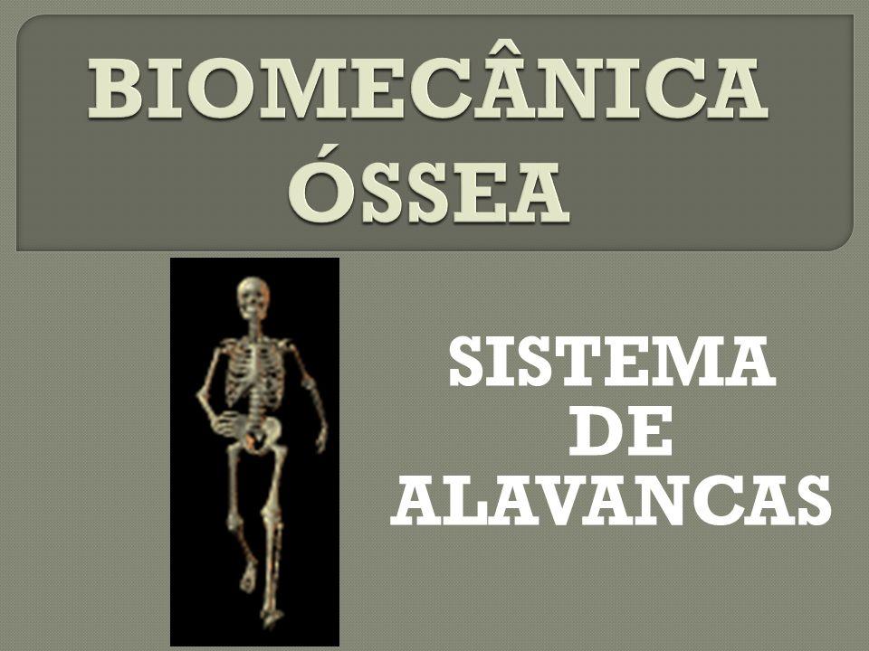 BIOMECÂNICA ÓSSEA SISTEMA DE ALAVANCAS