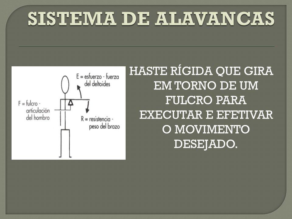 SISTEMA DE ALAVANCAS HASTE RÍGIDA QUE GIRA EM TORNO DE UM FULCRO PARA EXECUTAR E EFETIVAR O MOVIMENTO DESEJADO.