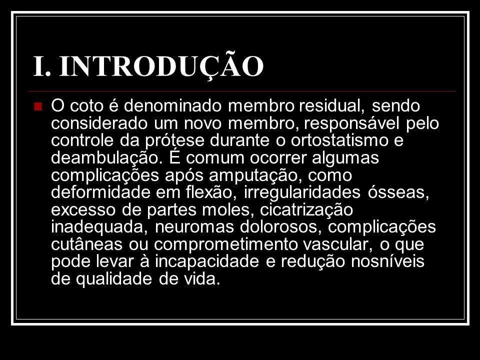 I. INTRODUÇÃO