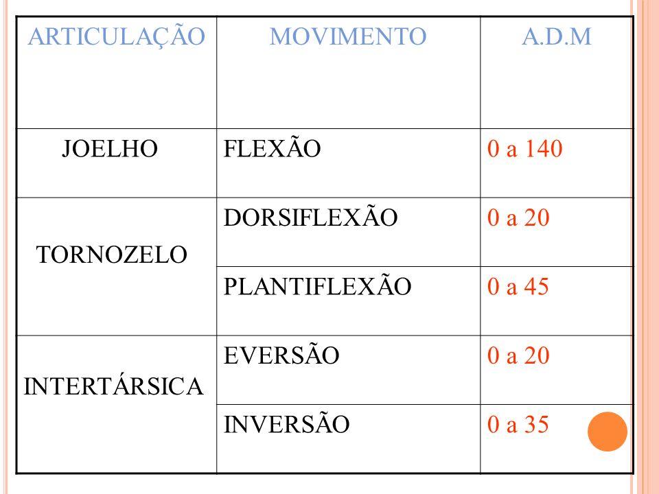 ARTICULAÇÃO MOVIMENTO. A.D.M. JOELHO. FLEXÃO. 0 a 140. TORNOZELO. DORSIFLEXÃO. 0 a 20. PLANTIFLEXÃO.