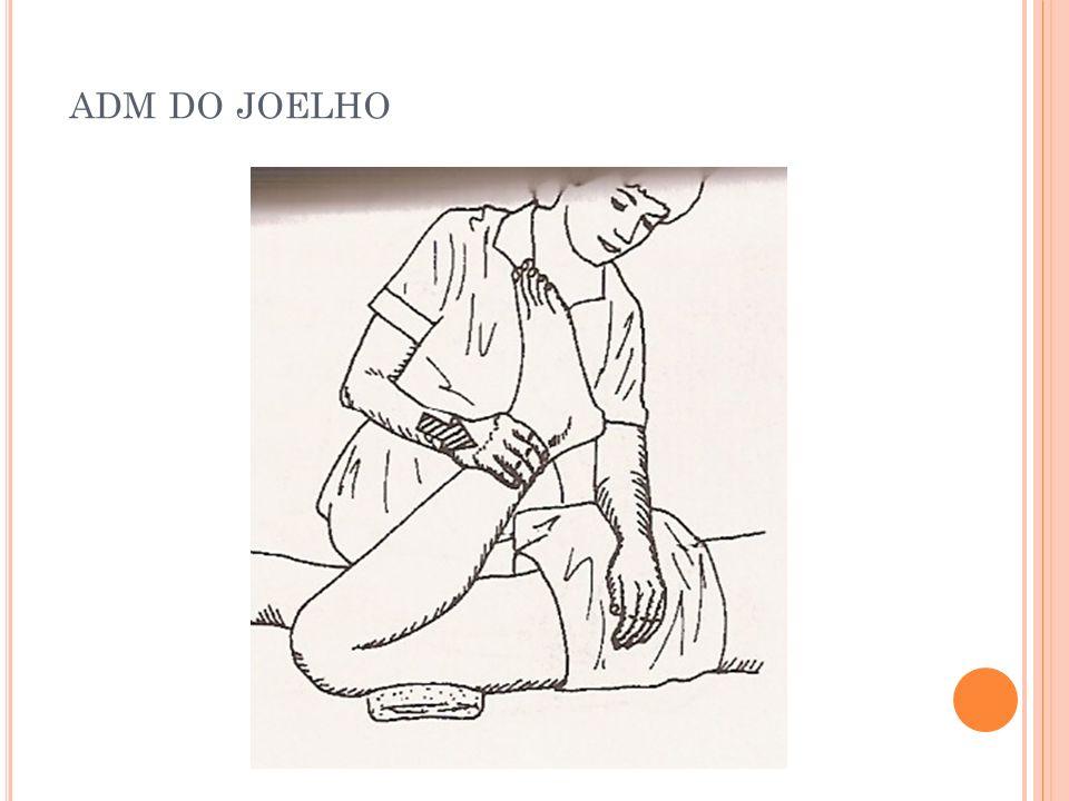 adm do joelho