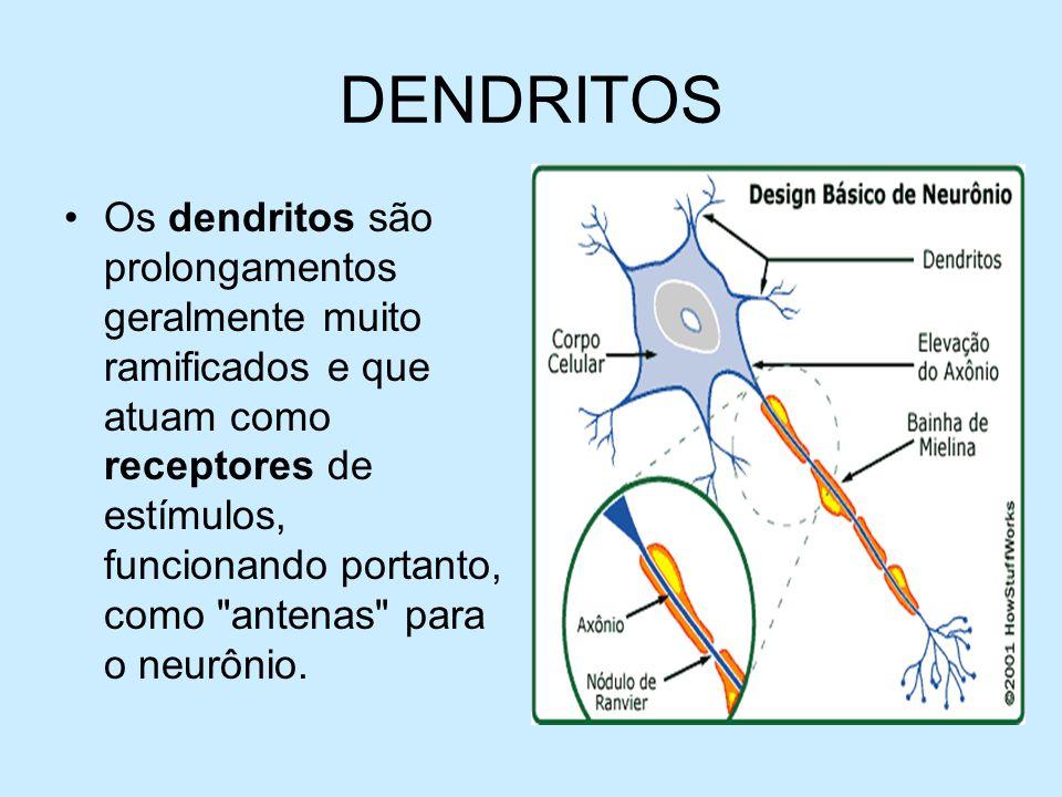 DENDRITOS