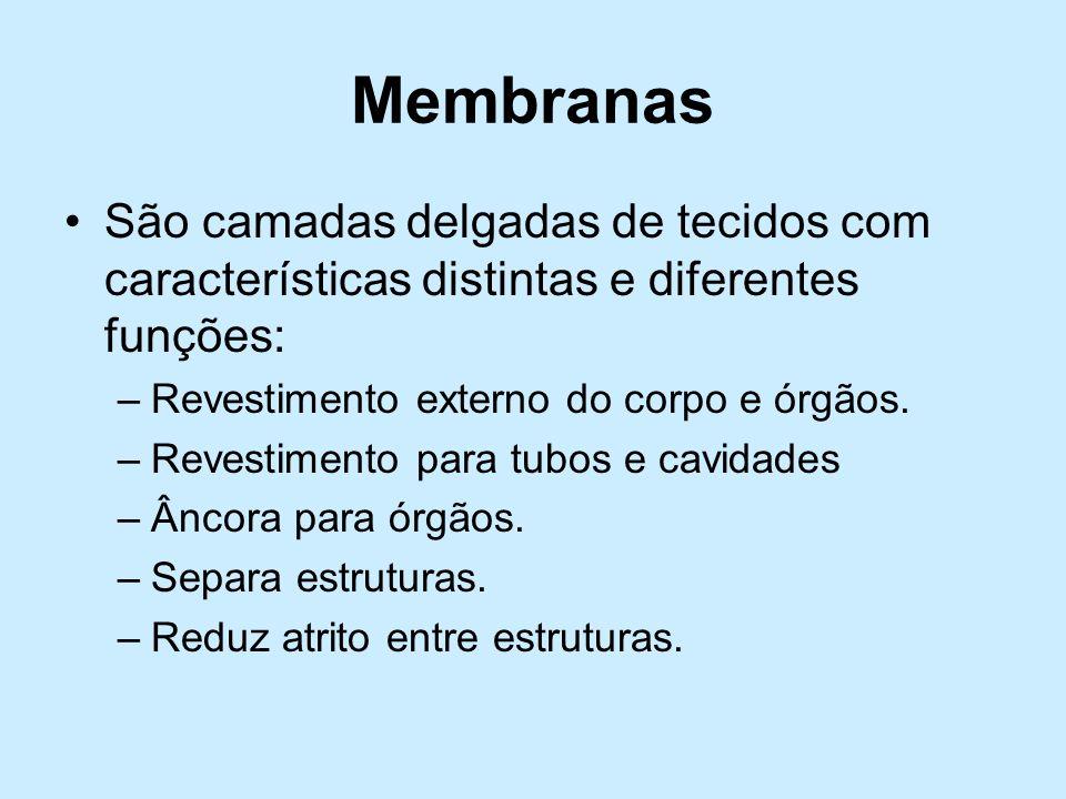MembranasSão camadas delgadas de tecidos com características distintas e diferentes funções: Revestimento externo do corpo e órgãos.