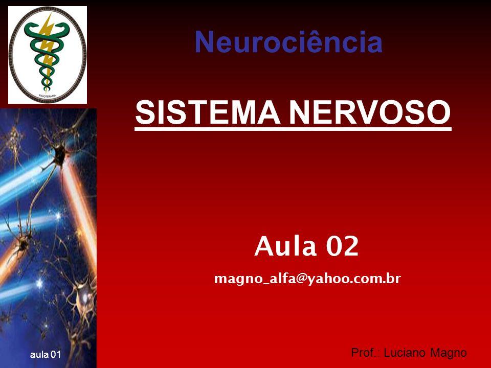 SISTEMA NERVOSO Neurociência Aula 02 magno_alfa@yahoo.com.br