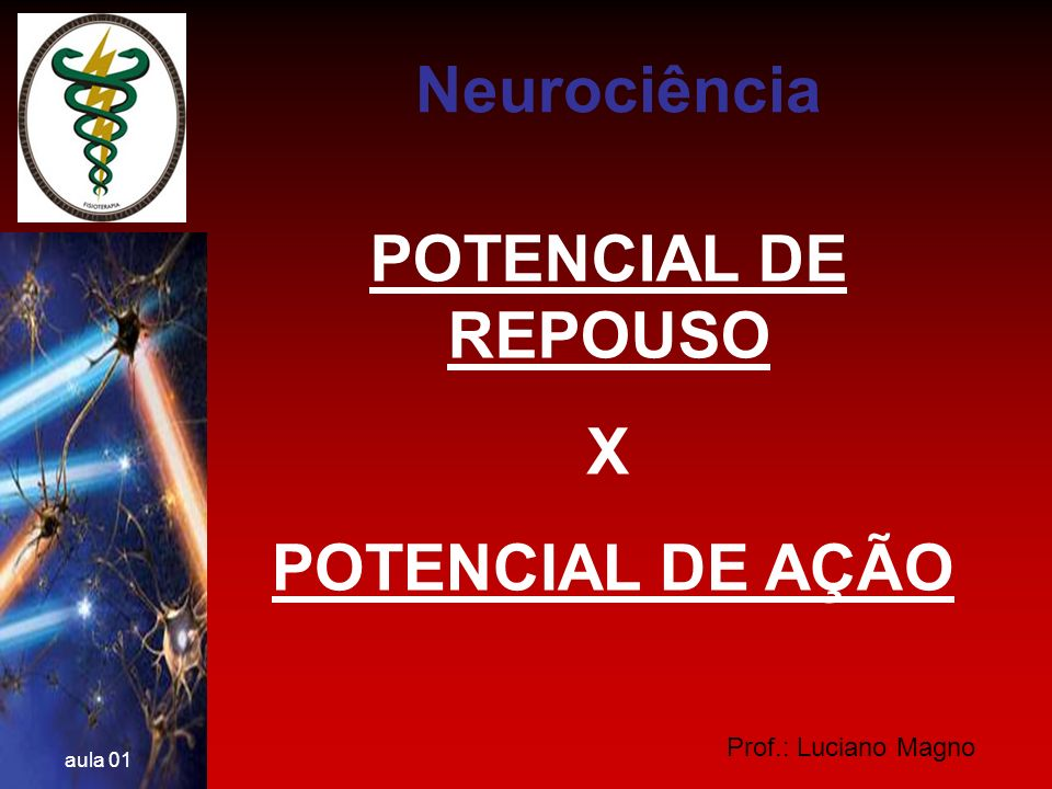 Neurociência POTENCIAL DE REPOUSO