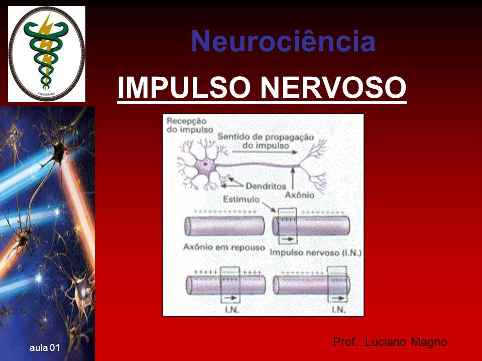 Neurociência IMPULSO NERVOSO Prof.: Luciano Magno aula 01