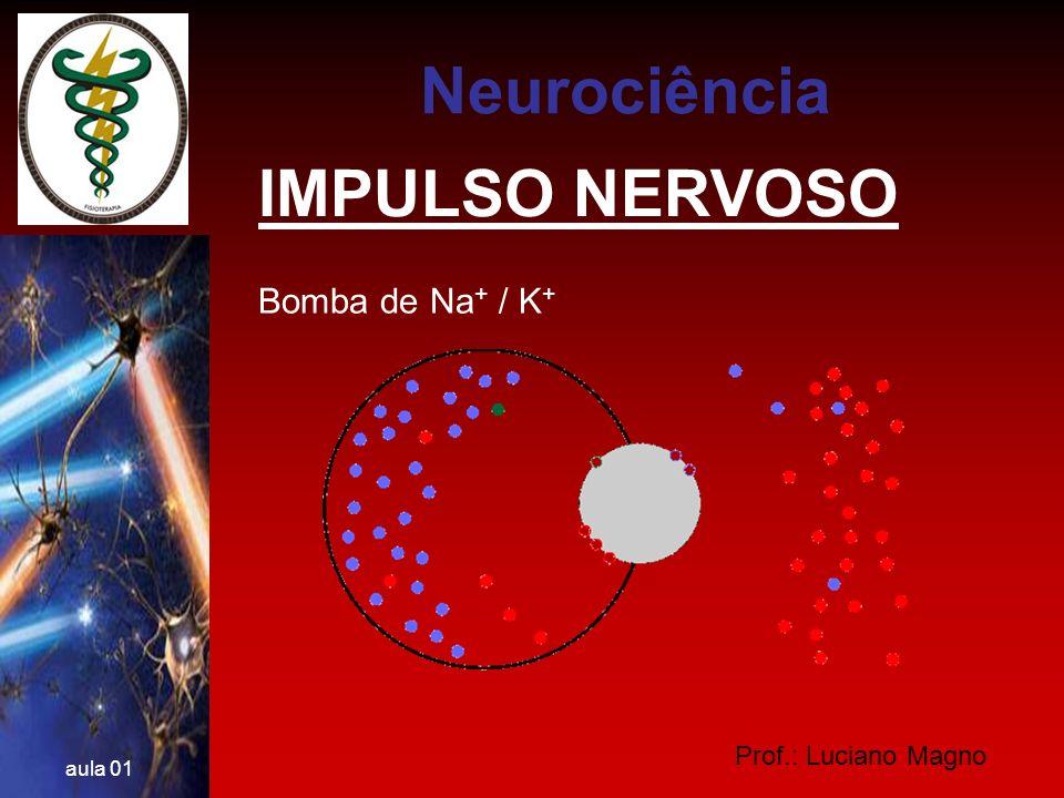Neurociência IMPULSO NERVOSO Bomba de Na+ / K+ Prof.: Luciano Magno