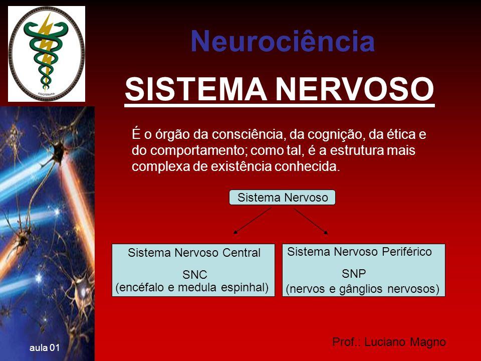 SISTEMA NERVOSO Neurociência