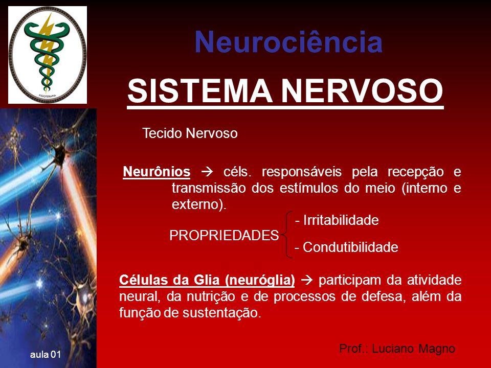 SISTEMA NERVOSO Neurociência Tecido Nervoso
