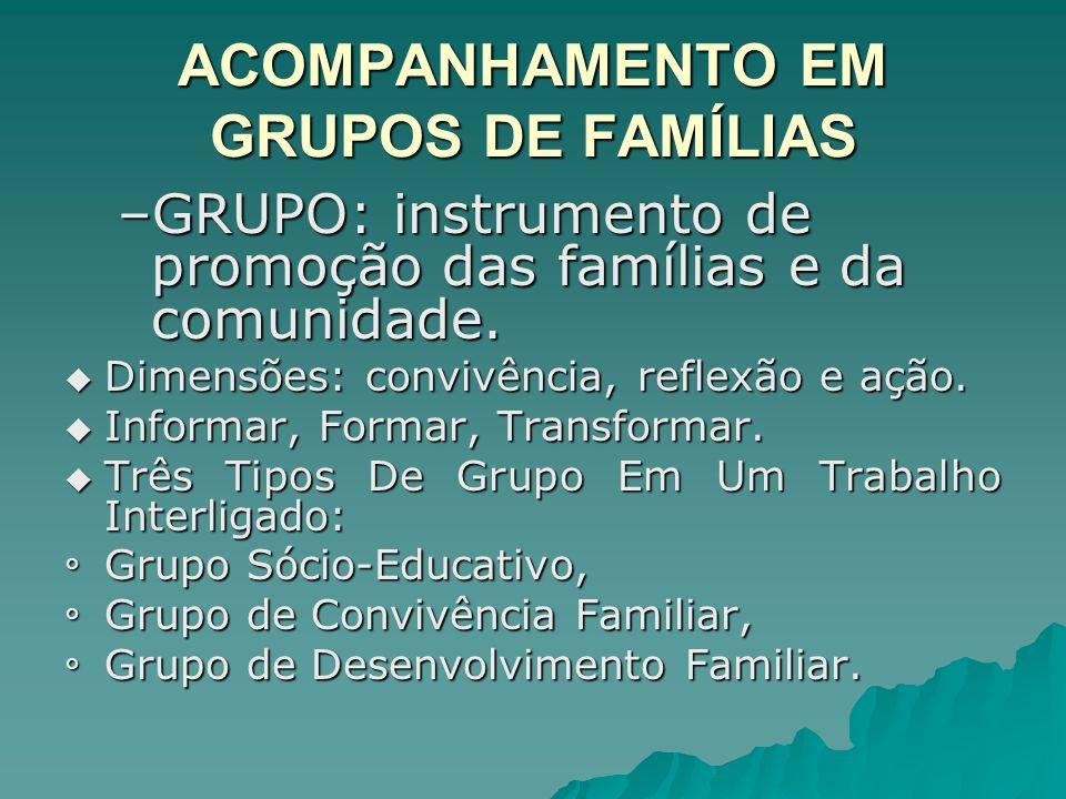 ACOMPANHAMENTO EM GRUPOS DE FAMÍLIAS
