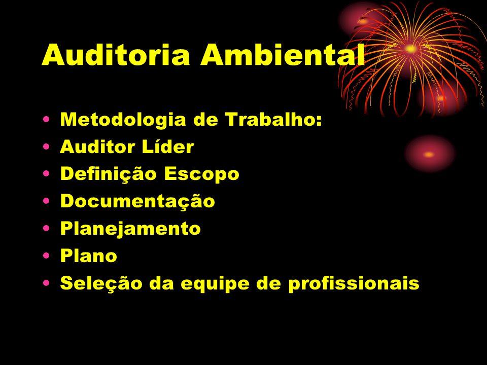 Auditoria Ambiental Metodologia de Trabalho: Auditor Líder