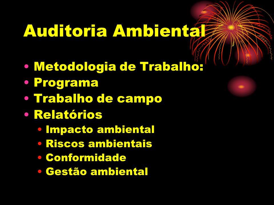Auditoria Ambiental Metodologia de Trabalho: Programa