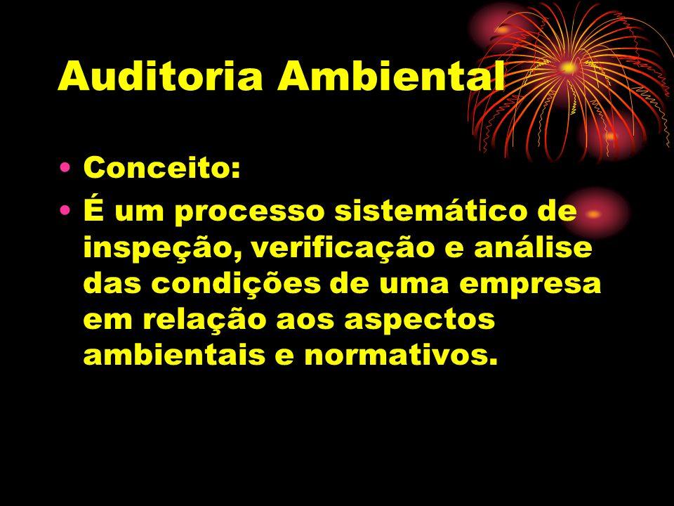 Auditoria Ambiental Conceito: