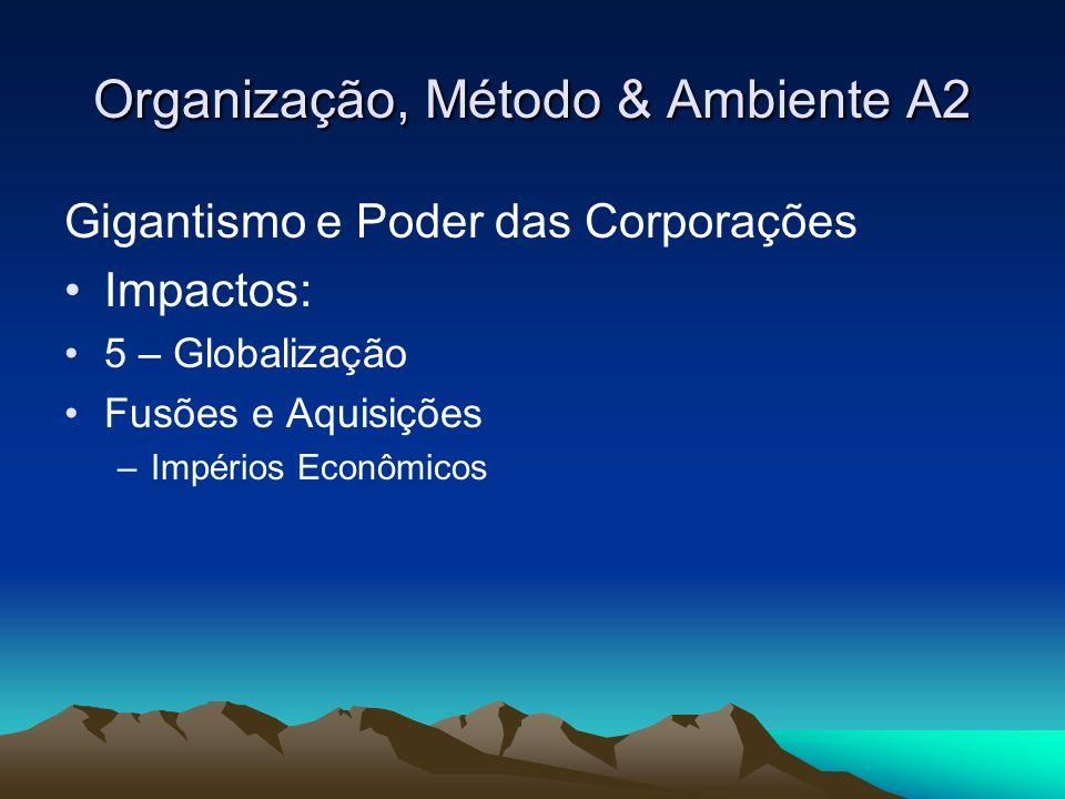Organização, Método & Ambiente A2