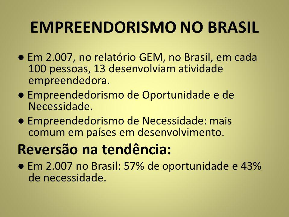 EMPREENDORISMO NO BRASIL