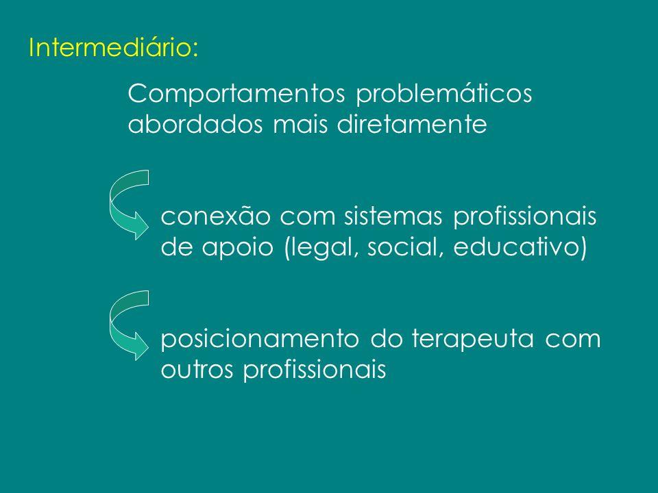 Intermediário: Comportamentos problemáticos abordados mais diretamente. conexão com sistemas profissionais de apoio (legal, social, educativo)