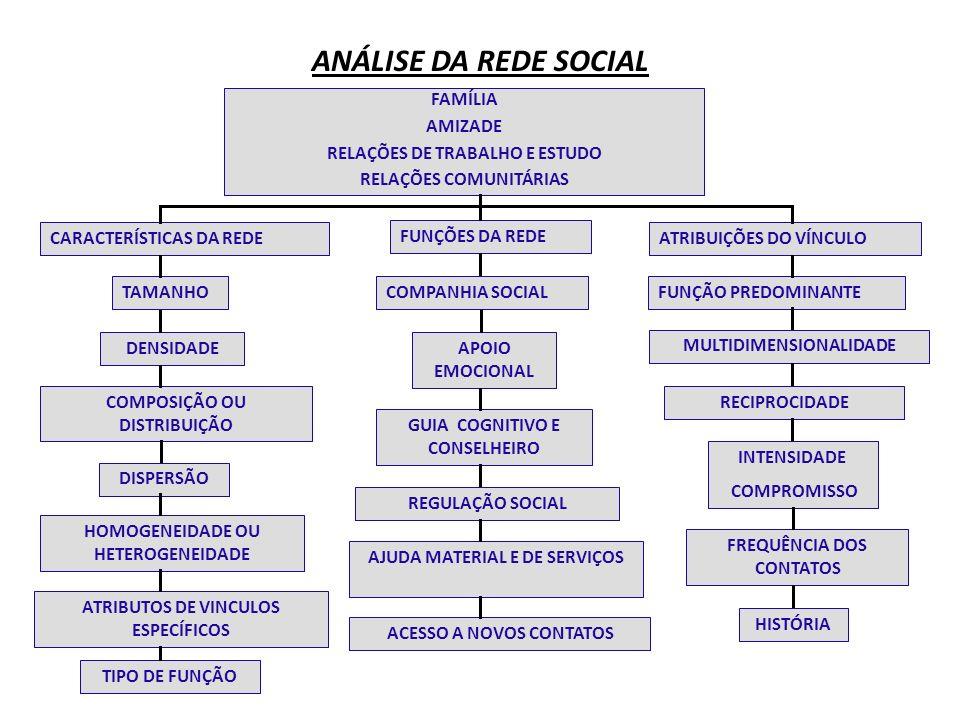 ANÁLISE DA REDE SOCIAL FAMÍLIA AMIZADE RELAÇÕES DE TRABALHO E ESTUDO