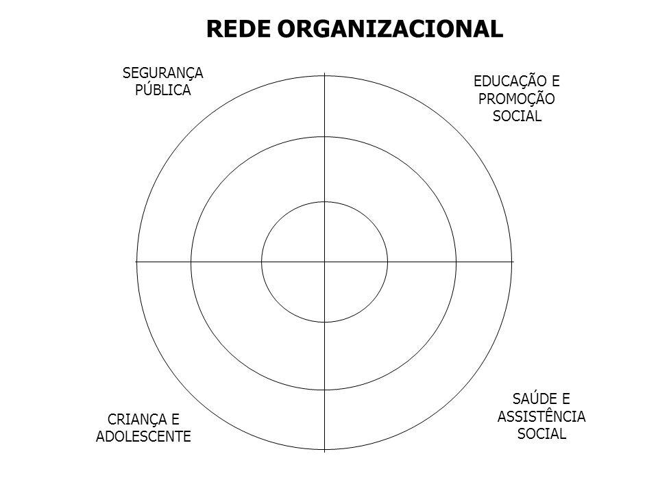 REDE ORGANIZACIONAL SEGURANÇA PÚBLICA EDUCAÇÃO E PROMOÇÃO SOCIAL