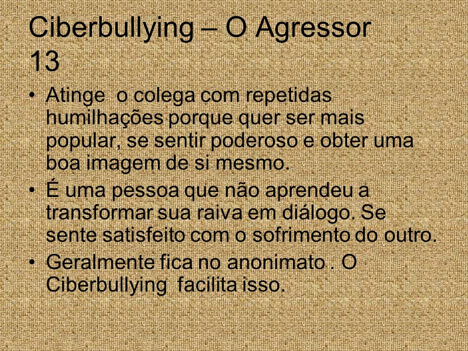 Ciberbullying – O Agressor 13