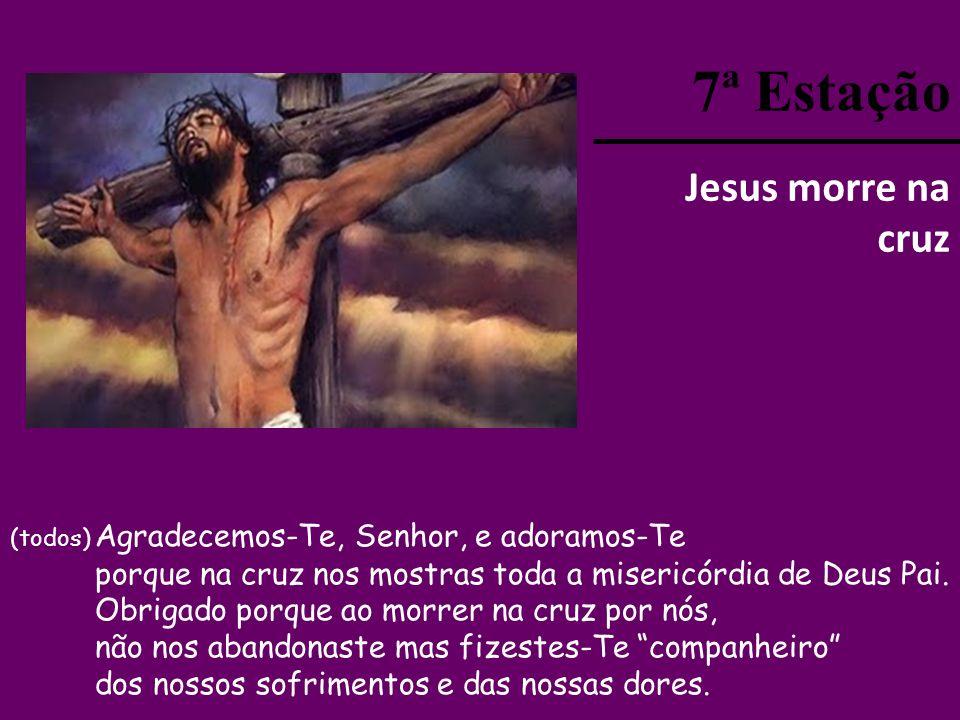 7ª Estação Jesus morre na cruz