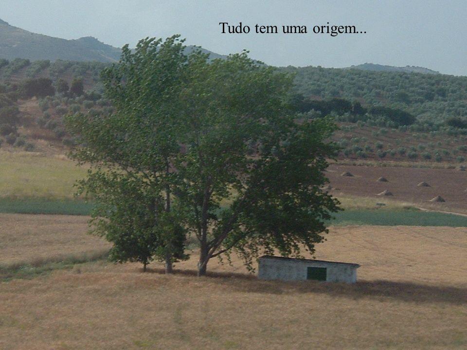 Tudo tem uma origem...
