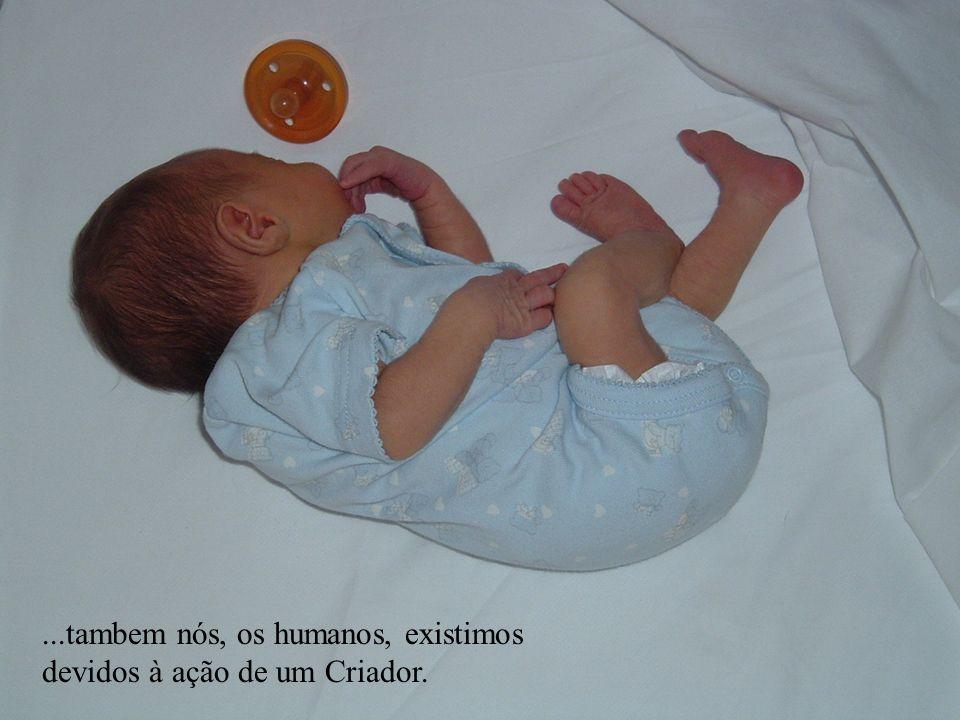 ...tambem nós, os humanos, existimos devidos à ação de um Criador.