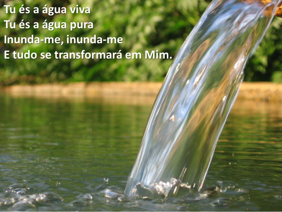 Tu és a água viva Tu és a água pura Inunda-me, inunda-me E tudo se transformará em Mim.