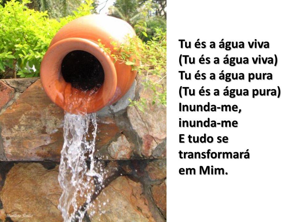Tu és a água viva(Tu és a água viva) Tu és a água pura (Tu és a água pura) Inunda-me, inunda-me E tudo se transformará.