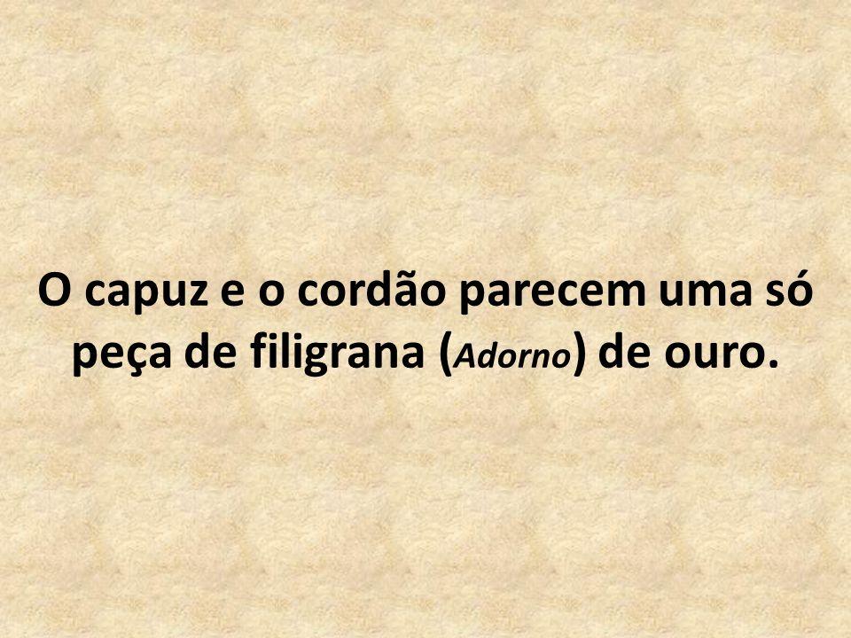 O capuz e o cordão parecem uma só peça de filigrana (Adorno) de ouro.