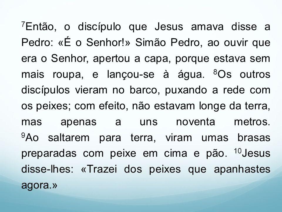 7Então, o discípulo que Jesus amava disse a Pedro: «É o Senhor