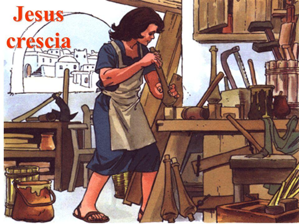 Jesus crescia Gotas de Crystal Ano: 2004