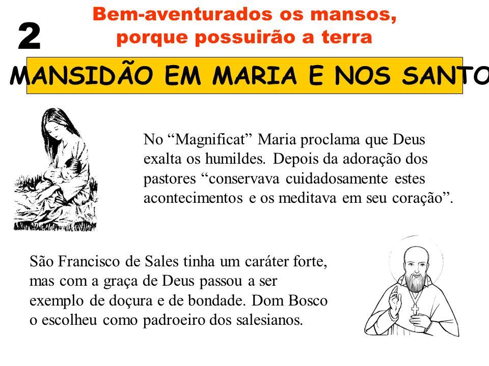 A MANSIDÃO EM MARIA E NOS SANTOS