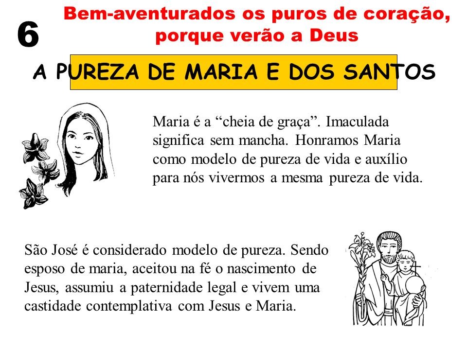 A PUREZA DE MARIA E DOS SANTOS