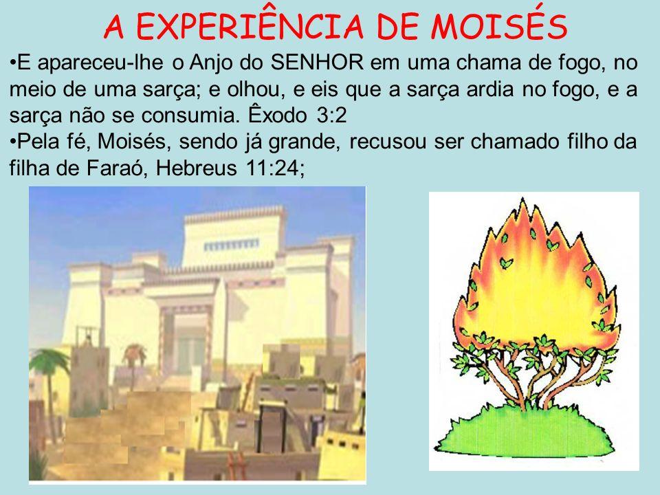 A EXPERIÊNCIA DE MOISÉS