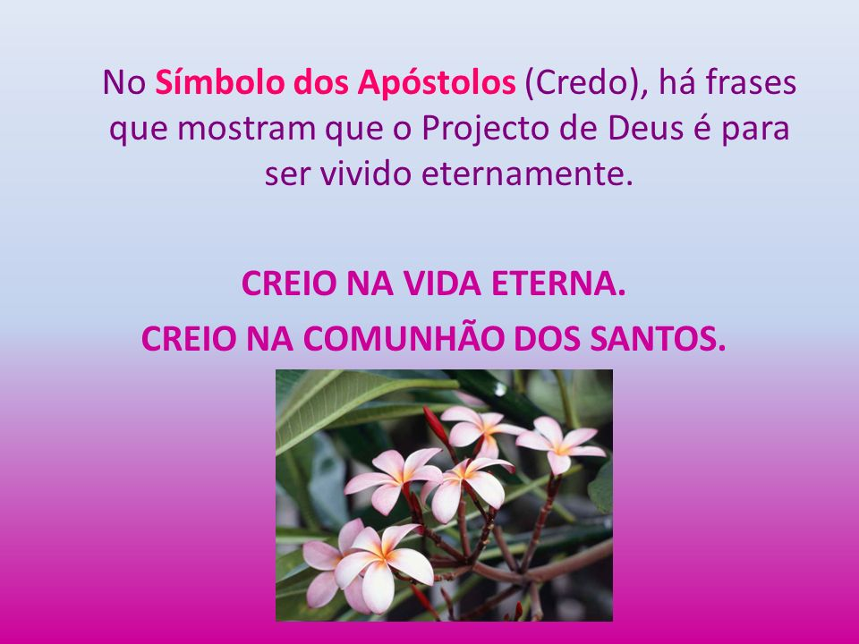 No Símbolo dos Apóstolos (Credo), há frases que mostram que o Projecto de Deus é para ser vivido eternamente.