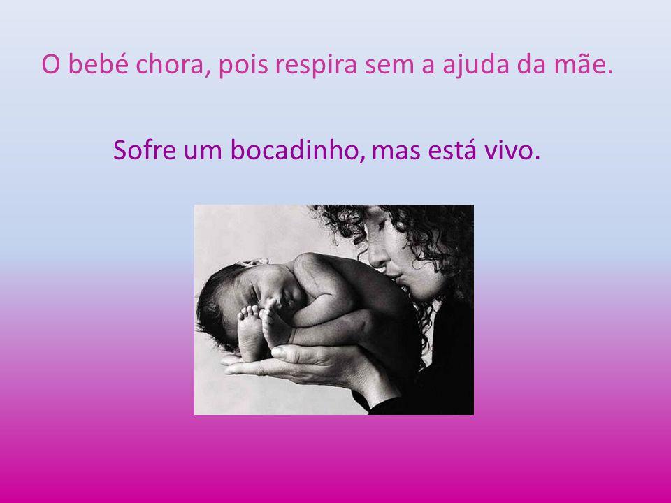 O bebé chora, pois respira sem a ajuda da mãe