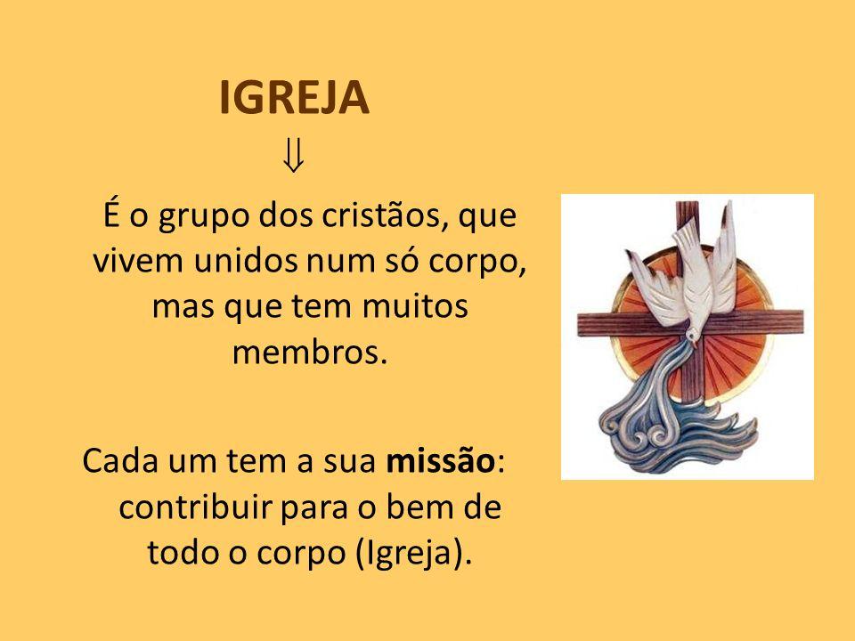 IGREJA  É o grupo dos cristãos, que vivem unidos num só corpo, mas que tem muitos membros.
